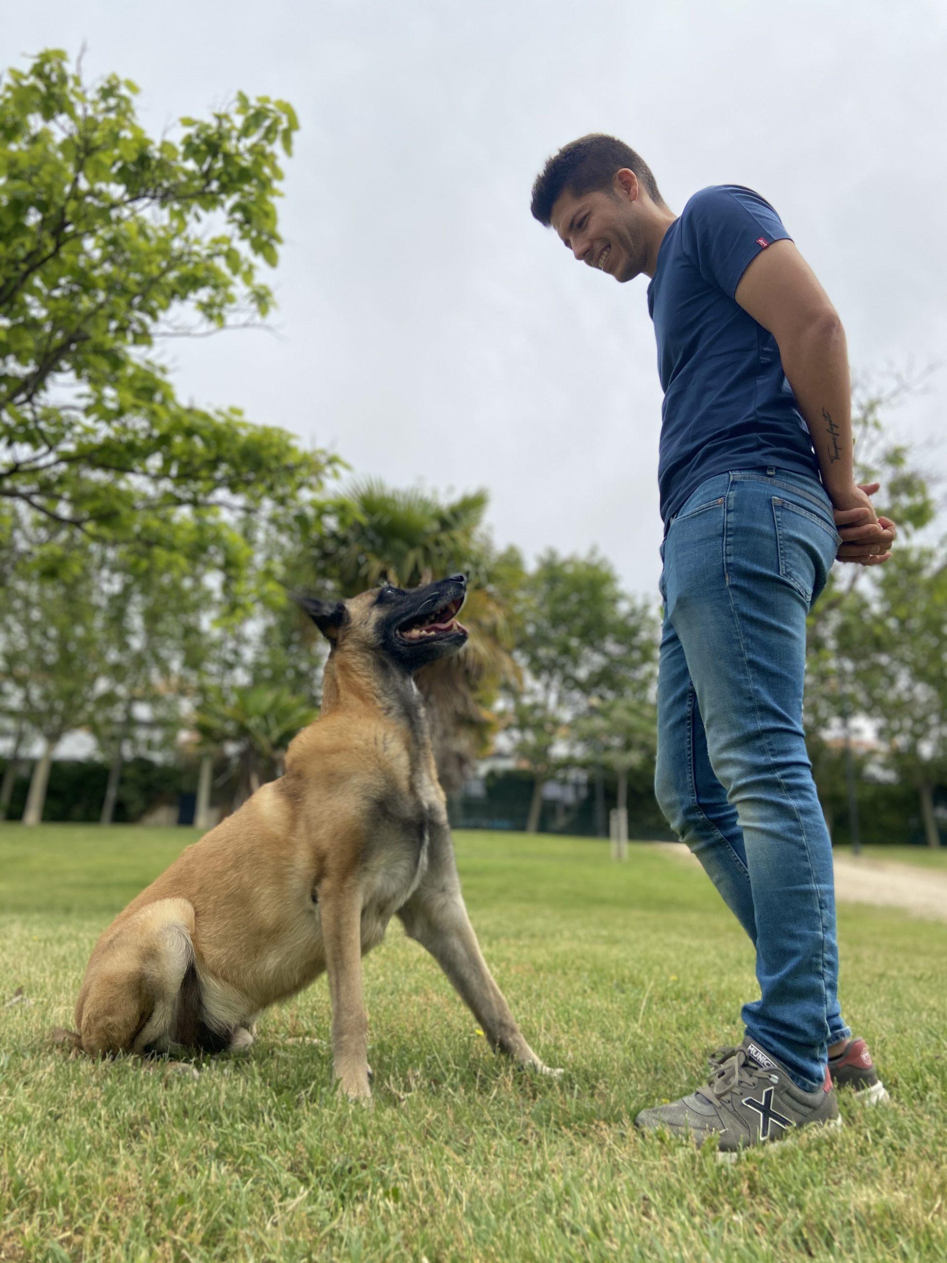 Adiestrador canino en Zaragoza